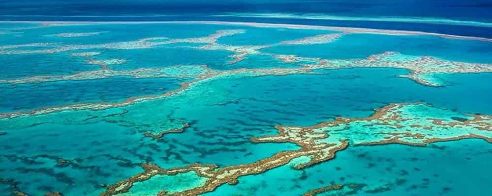 Great-Barrier-Reef-Must-See-Bucket-List